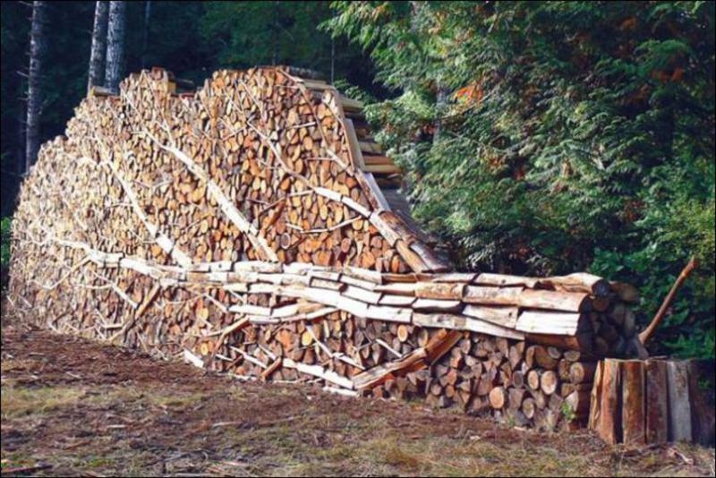 firewood stack 1.jpeg